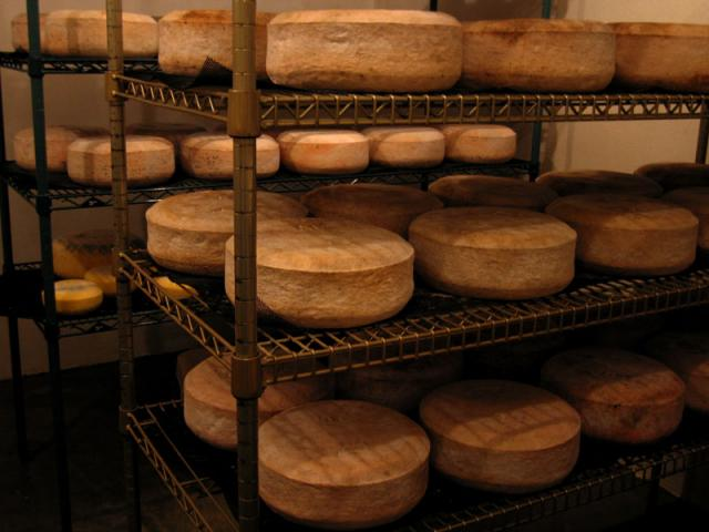 Cheese Cave - The cheese is made in two and ten pound wheels.